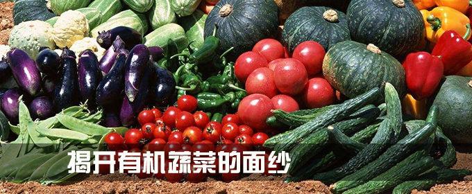 揭开有机蔬菜的面纱