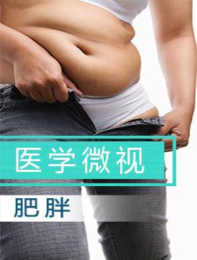 医学微视-肥胖
