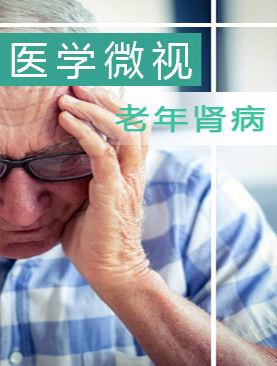 医学微视-老年肾病