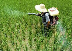 如何预防农药中毒
