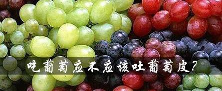 吃葡萄到底应不应该吐葡萄皮?