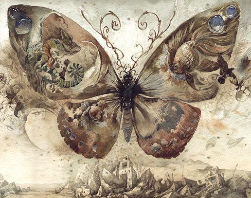 什么是蝴蝶效应
