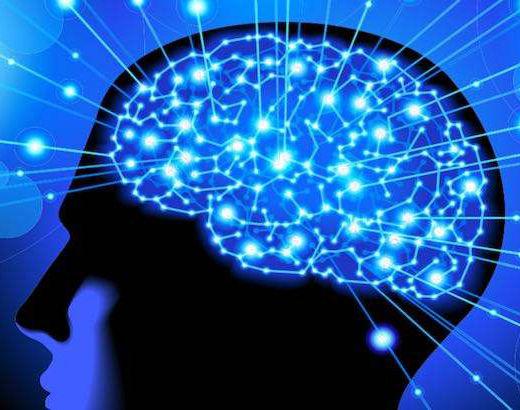 人类了解自己的大脑吗