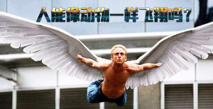 人能像动物一样飞翔吗?