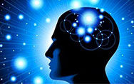 人脑如何将记忆储存