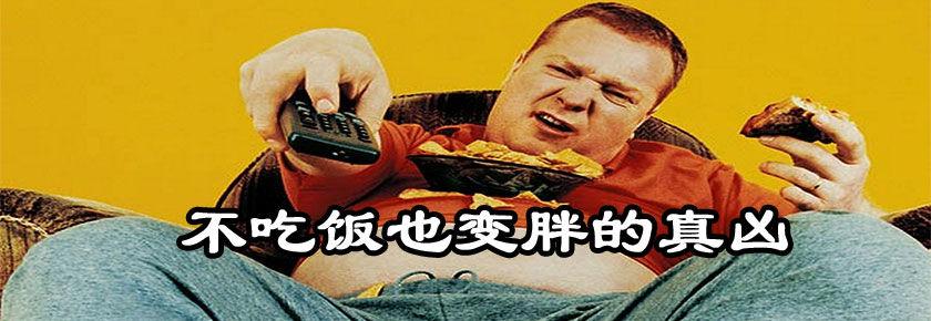 【明白学堂】不吃饭也变胖的真凶