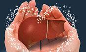 乙肝患者需要做哪些检查?