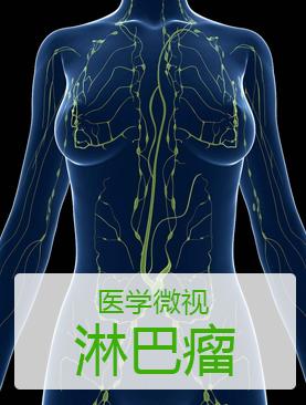 医学微视-淋巴瘤