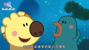 《熊小米读科学》03集:我们和它们听到的世界一样吗
