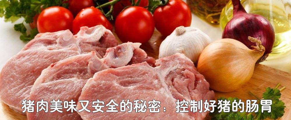 猪肉美味又安全的秘密:控制好猪的肠胃