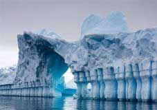 曹雪芹的一句话道出南极美