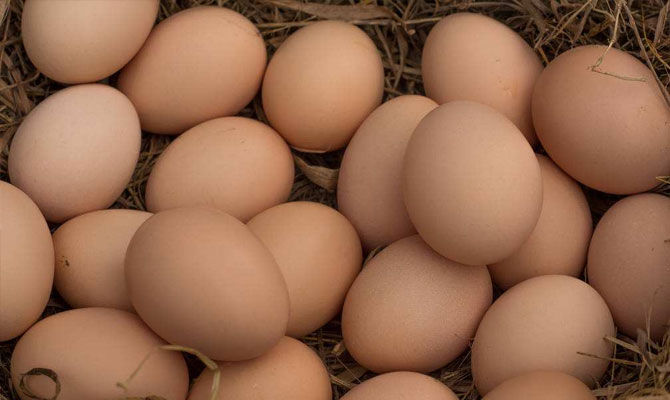 小K爱科普-鸡蛋洗了存放会坏你知道吗?