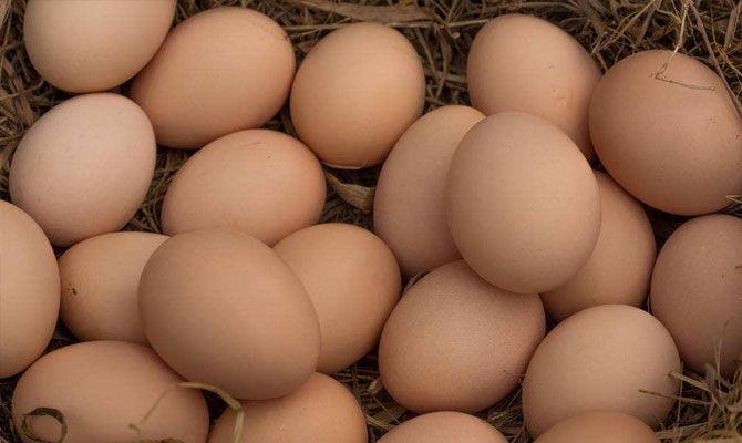 鸡蛋洗了存放会坏你知道吗?