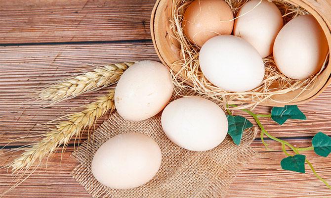 土鸡蛋真的更健康更安全吗?