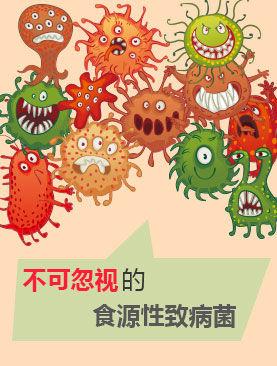 不可忽视的食源性致病菌