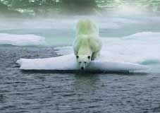 地球变暖是有警告的