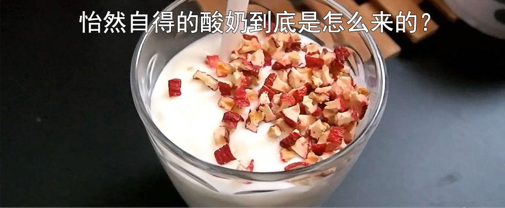 酸奶-怡然自乐