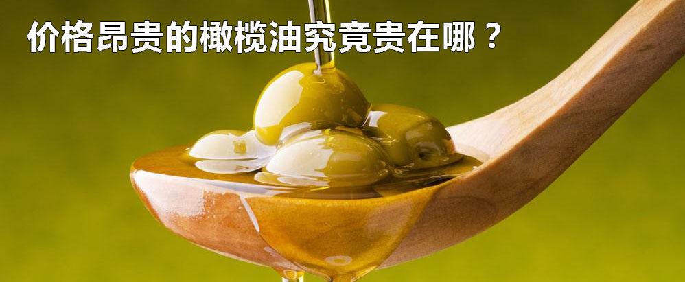 露露大白话-橄榄油究竟贵在哪里?