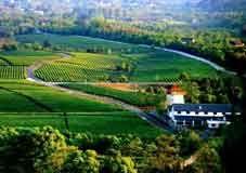 西北现代农业与生态保护