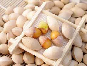 关于银杏的营养传奇 生吃白果需谨慎