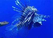 海洋变迁的秘密