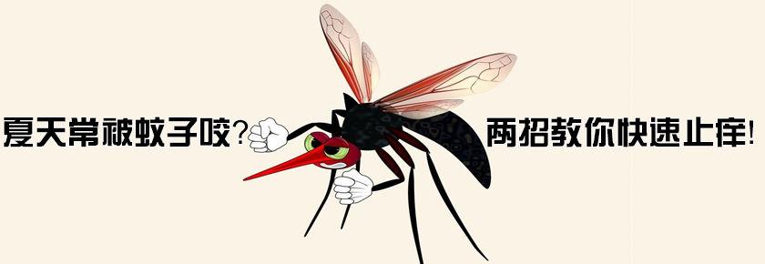 【女子力科学社】夏天常被蚊子咬?两招教你快速止痒