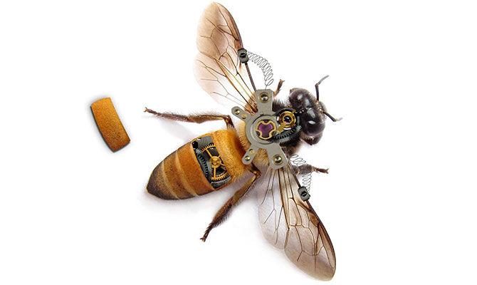 小K讲科技-机械蜜蜂