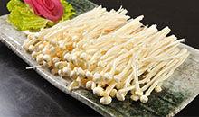 识物园-金针菇 大名鼎鼎的真菌