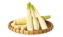 识物园-茭白 健康蔬菜