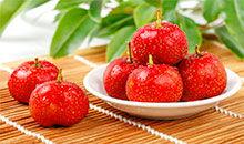 识物园-山楂 酸甜可人的小红果