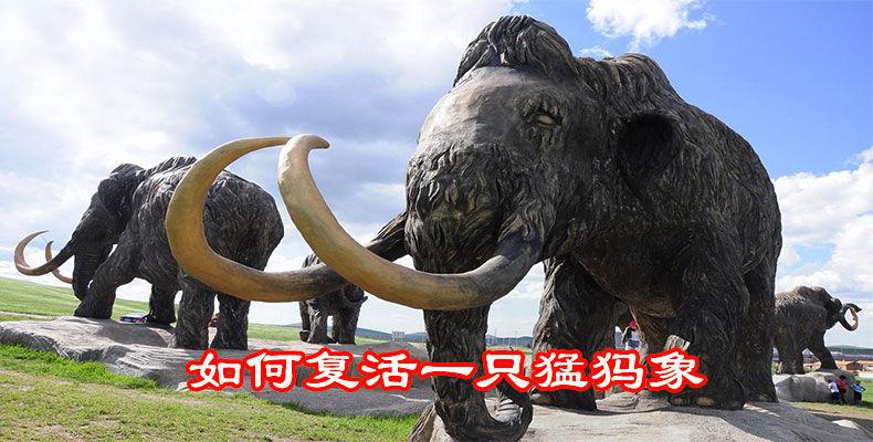 如何复活一只猛犸象