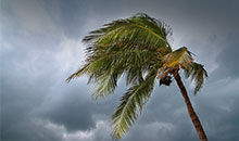 我们应该如何应对台风?
