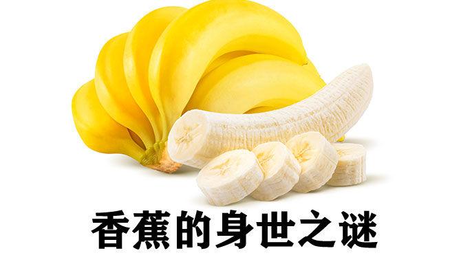 香蕉的身世之谜
