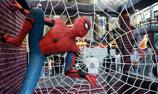 带你了解人造蜘蛛丝