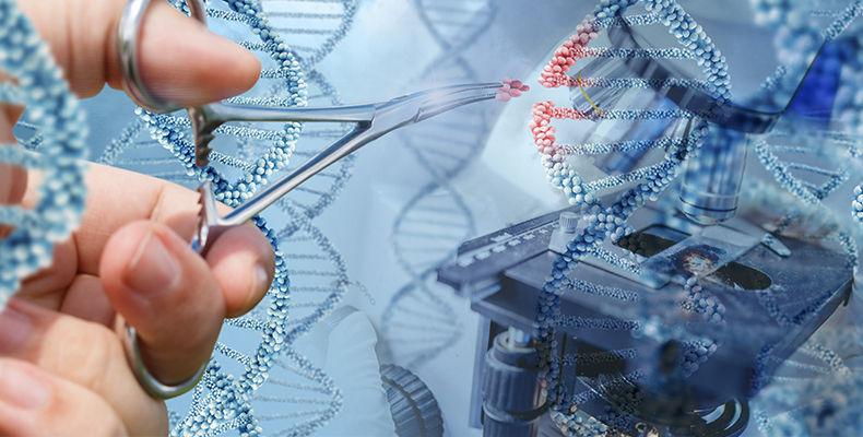 生物工程类专业:你将有机会抓住人类的未来