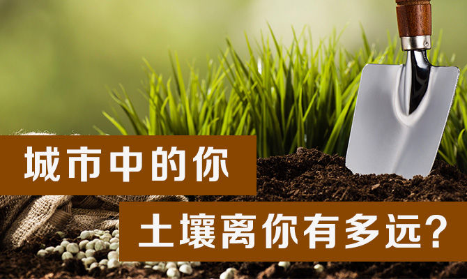 城市中的你,土壤离你有多远?