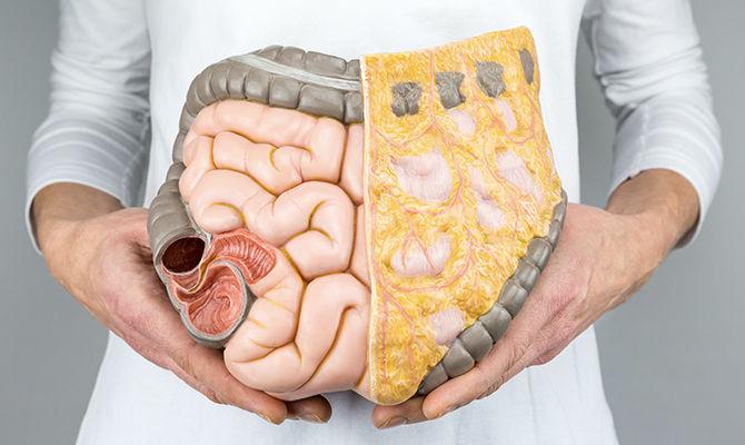 什么是肠结核