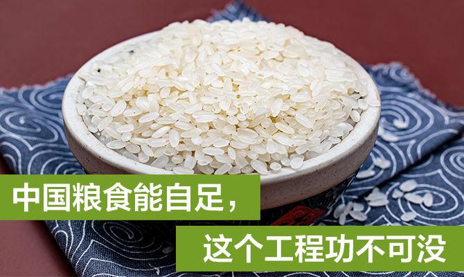 中国粮食能自足,这个工程功不可没