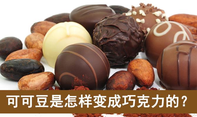 可可豆是怎样变成巧克力的?