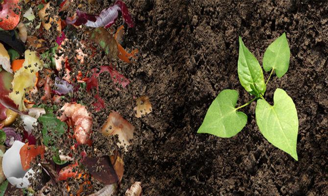 农业垃圾如何变身有机化肥