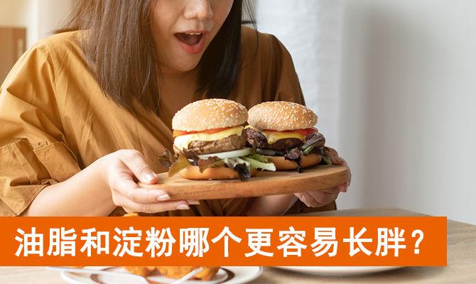 油脂和淀粉哪个更容易长胖?