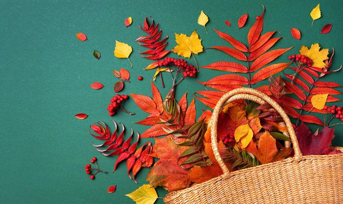 立秋里的仪式感 你啃秋了吗?