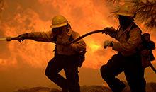 森林消防员的一分钟